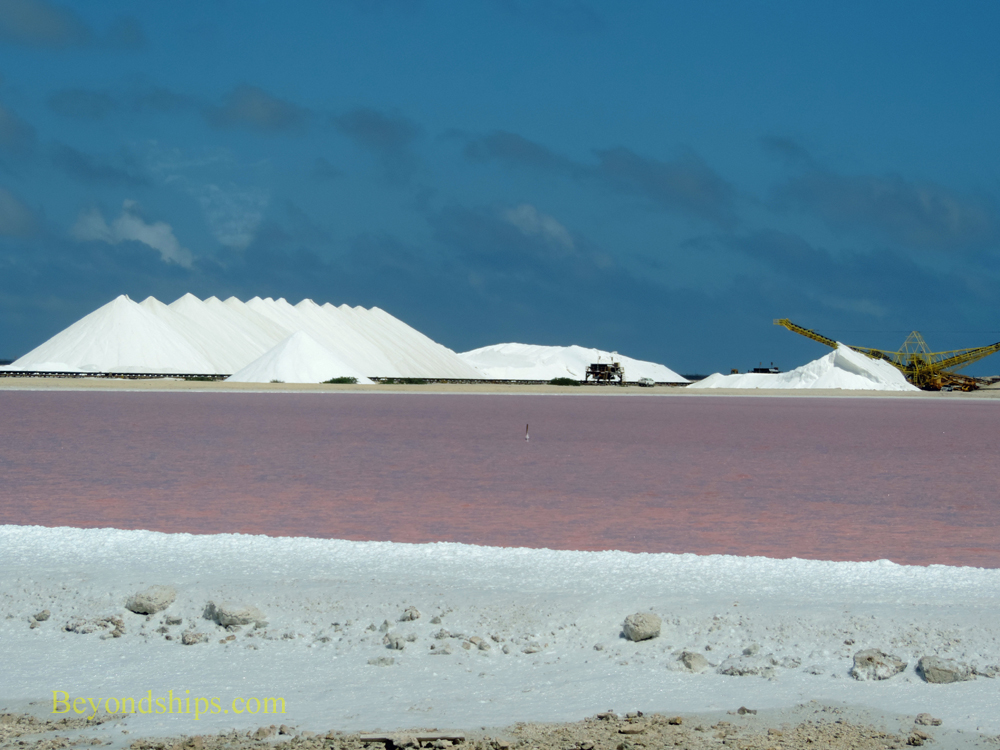 Salt mounds and pink pond, Bonaire