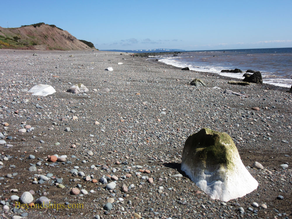 Beach on the Bay of Fundy