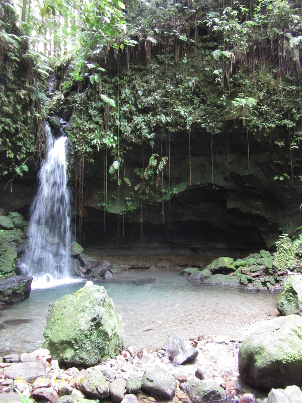Picture Dominica Emerald Pool